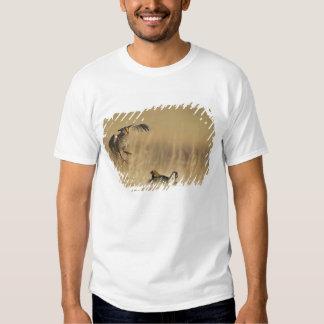 Pollos de pradera masculinos en los leks en el camisas