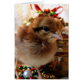 Polluelo 3 del navidad tarjeta
