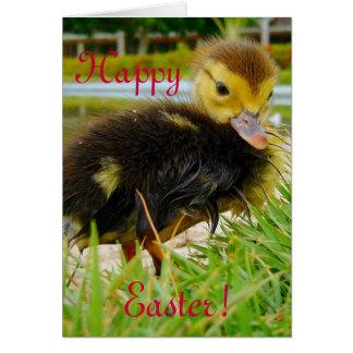 Polluelo de Pascua II Tarjeta De Felicitación