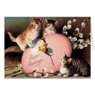 Polluelo del bebé de los gatitos de la tarjeta del
