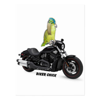 Polluelo del motorista del loro en Harley Davidson Postal