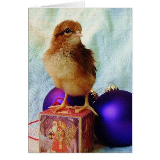 Polluelo en el ornamento del navidad del vintage tarjeta