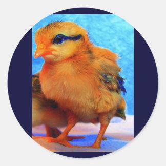 Polluelo-UNo-Dee-Luz de Pascua Pegatina Redonda