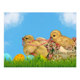 Polluelos de Pascua de la primavera Postal