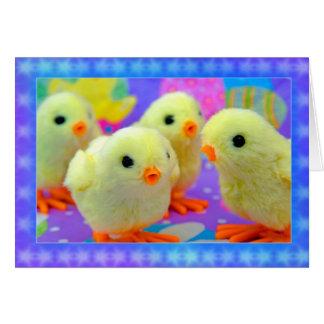 Polluelos de Pascua Tarjeta