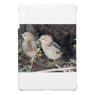 Polluelos del bebé
