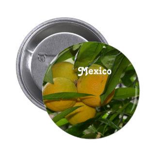 Pomelo de México Pins