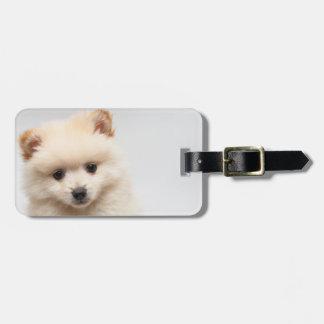 Pomeranian demasiado lindo etiqueta para maletas