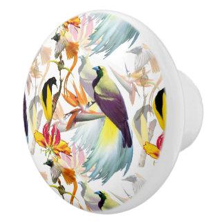 Pomo De Cerámica Acuarela exótica de las aves del paraíso y de las