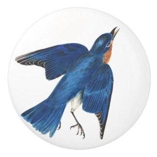Pomo De Cerámica Botón del animal de la fauna del pájaro del