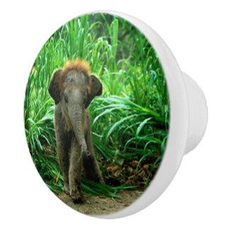 Pomo De Cerámica Elefante e hierba