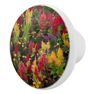 Pomo De Cerámica Jardín de flores vibrante del verano en Orlando la