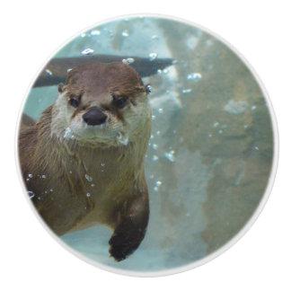 Pomo De Cerámica Una natación linda de la nutria de Brown en una