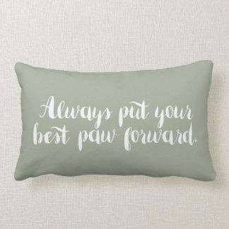 Ponga siempre su mejor almohada de la pata
