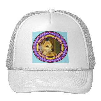 ponga su foto aquí… gorras