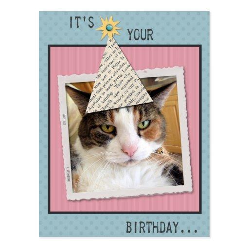 Pookie la postal del cumpleaños del gato