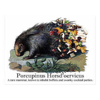 Porcupinus Hoerd'oervicus Postal