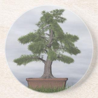 Posavasos Bonsais del árbol del enebro del templo - 3D
