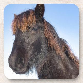 Posavasos Cabeza del retrato del caballo negro del Frisian