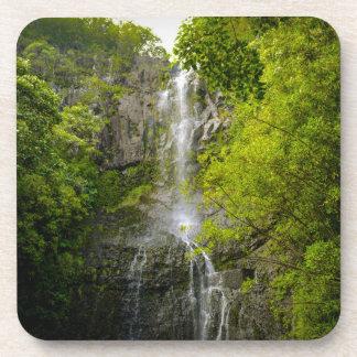 Posavasos Cascada en Maui Hawaii