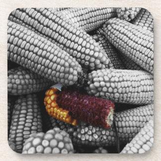 Posavasos Chapoteo del color del maíz en la mazorca