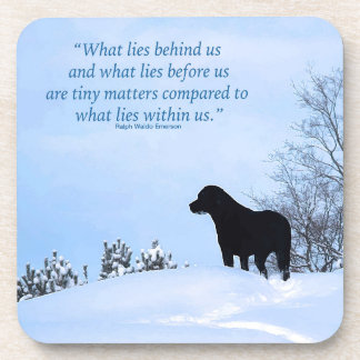 Posavasos Cita negra de Labrador - qué miente dentro de