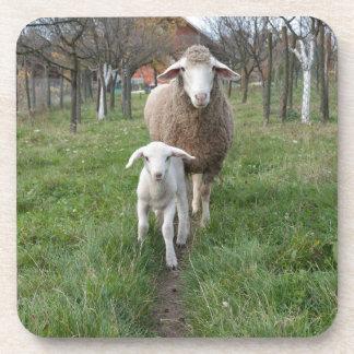 Posavasos Cordero y ovejas