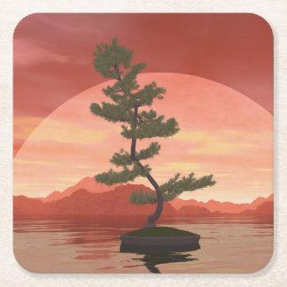 Posavasos Cuadrado De Papel Árbol de los bonsais del pino escocés - 3D rinden