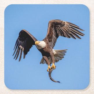 Posavasos Cuadrado De Papel Eagle calvo con un pescado