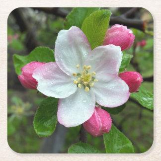 Posavasos Cuadrado De Papel Gotas de lluvia en poca flor