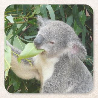 Posavasos Cuadrado De Papel Koala que come la hoja de la goma