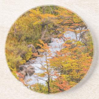 Posavasos De Arenisca Escena coloreada del paisaje del bosque, Patagonia