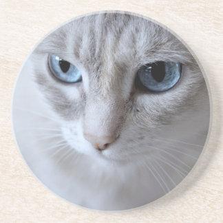 Posavasos De Arenisca Gato de Kisa de los ojos azules