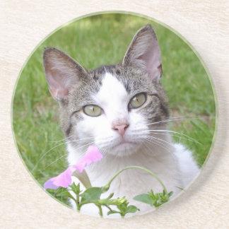 Posavasos De Arenisca Gato de Tabby blanco y petunia rosada