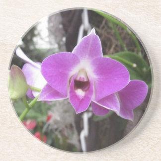 Posavasos De Arenisca Práctico de costa púrpura de la orquídea del Dendr