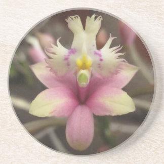 Posavasos De Arenisca Práctico de costa rosado de la orquídea del Epiden