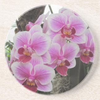 Posavasos De Arenisca Práctico de costa rosado de las orquídeas del Phal