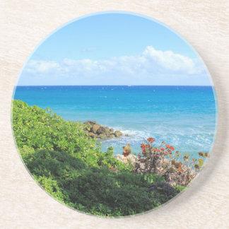 Posavasos De Arenisca rocky-foliage-coast-deerfield-beach-4s6490