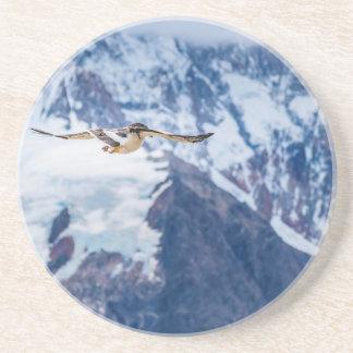 Posavasos De Arenisca Vuelo patagón austral del pájaro