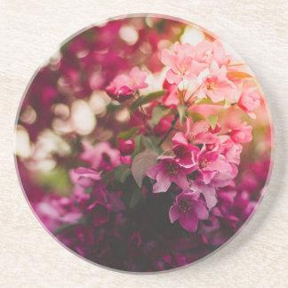 Posavasos De la flor rosada de las mujeres práctico de costa