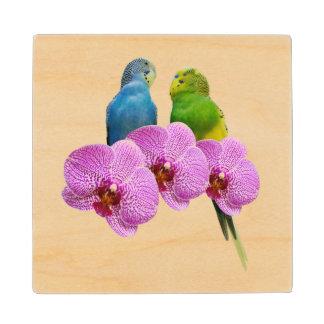 Posavasos De Madera Budgie con la orquídea púrpura