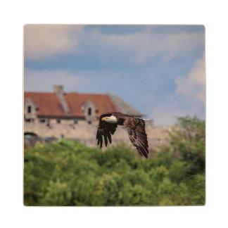 Posavasos De Madera Eagle calvo que pasa el fuerte Ticonderoga