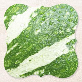 Posavasos De Papel Foto mojada, verde, joven, rayada de la calabaza