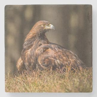 Posavasos De Piedra Eagle puesto a tierra