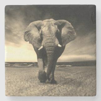 Posavasos De Piedra Elefante de Bull salvaje majestuoso en sepia