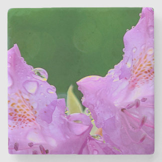 Posavasos De Piedra Flor violeta