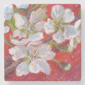 Posavasos De Piedra Flores blancos en Coster de mármol rojo