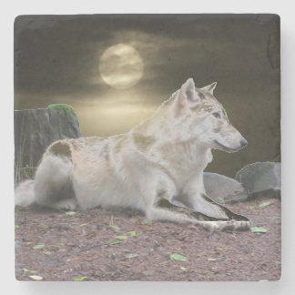 Posavasos De Piedra Lobo del fantasma en el claro de luna