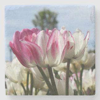 Posavasos De Piedra Práctico de costa de los tulipanes