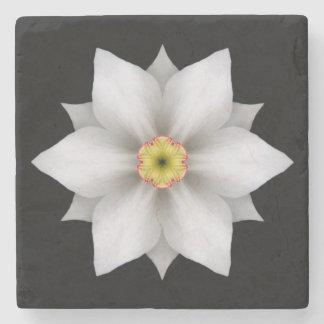 Posavasos De Piedra Práctico de costa de piedra de la flor